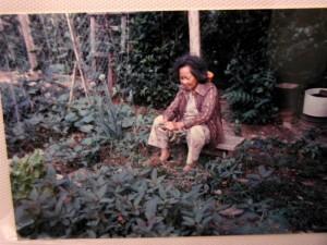 Garden_pa183325 copy